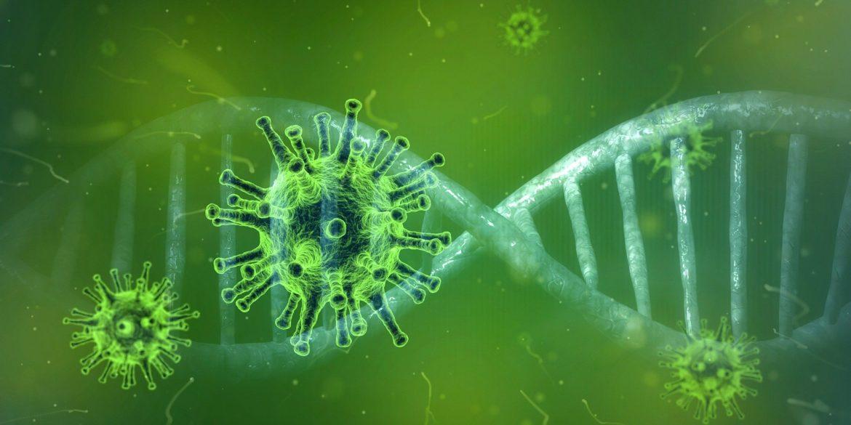 Coronavirus et allaitement